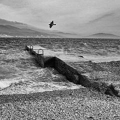 "photo ""The seaside"""