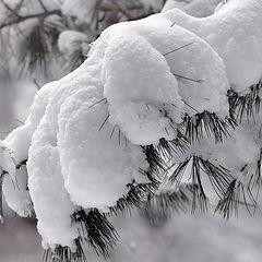 """фото """"Ещё один снежный фрагмент"""""""