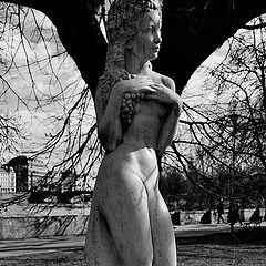 "photo ""Дерево и статуя"""