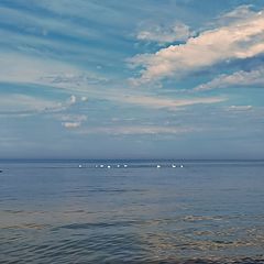 """photo """"May on the Gulf of Finland"""""""