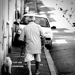 """фото """"the walk"""""""