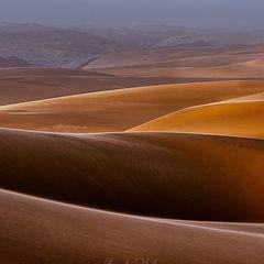 "photo ""Dunes Dreaming"""