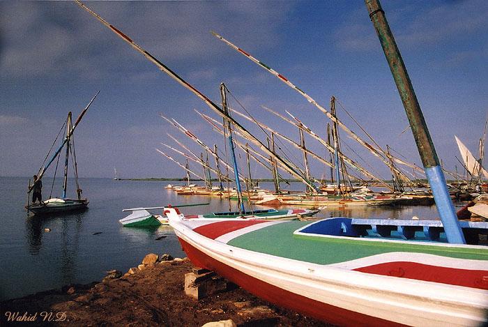 """фото """"Masts"""" метки: пейзаж, путешествия, Африка, вода"""