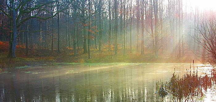 "фото ""Winterlight"" метки: природа,"