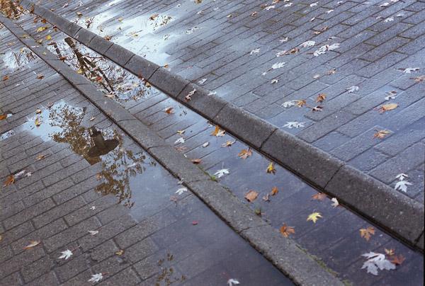 "photo ""Autumn in Danish Technical university"" tags: travel, landscape, Europe, autumn"