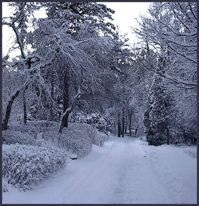 """photo """"A Road to Eternal Silence"""" tags: landscape, travel, winter"""