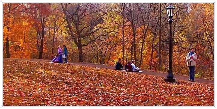 """photo """"Simpleton 2"""" tags: landscape, genre, autumn"""