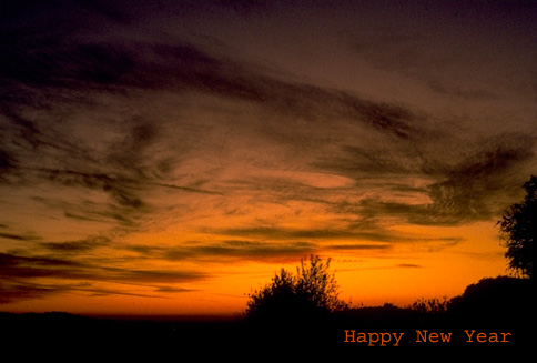 "photo ""Happy New Year"" tags: misc.,"