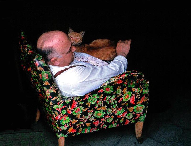 """photo """"`Cat` Nap"""" tags: genre, portrait,"""