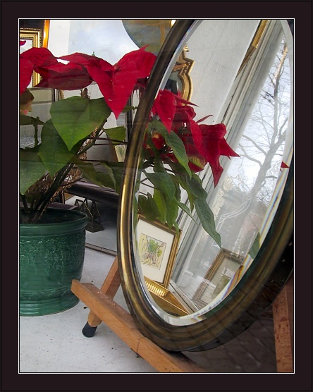 "photo ""Pointless Still-Life with Too Many Reflections"" tags: still life,"