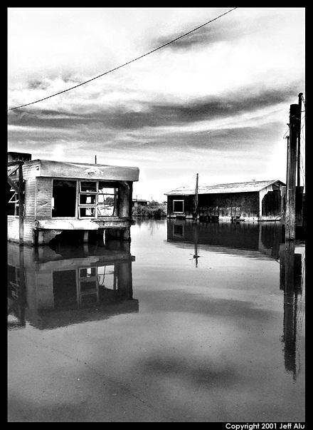 "photo ""Submerge"" tags: landscape, black&white,"