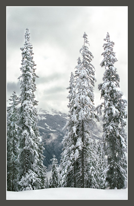"photo ""The Alpine sketches 11"" tags: landscape, mountains, winter"