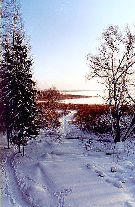 """фото """"А завтра снова в путь..."""" метки: пейзаж, зима, лес"""