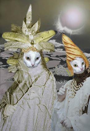 """фото """"cats in Venice"""" метки: разное, фотомонтаж,"""