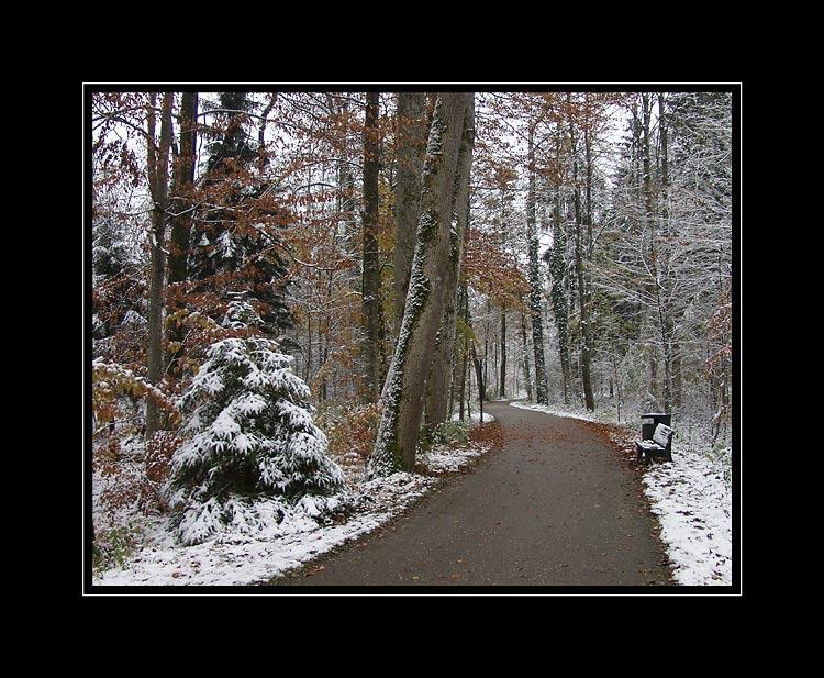 """фото """"В парке"""" метки: путешествия, пейзаж, Европа, зима"""