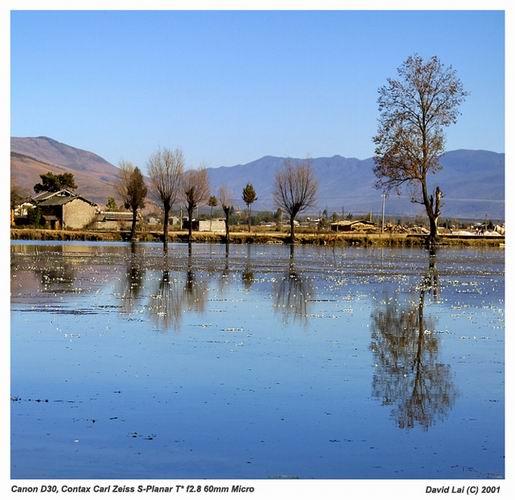"""фото """"Pond in Yunnan"""" метки: пейзаж, путешествия, Азия"""