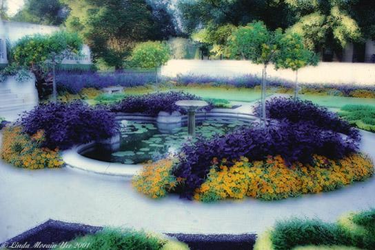 "photo ""Late Summer Garden"" tags: landscape, summer"