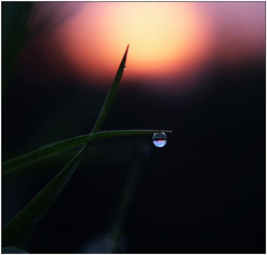 """photo """"At Sunrise-I"""" tags: landscape, macro and close-up, sunset"""