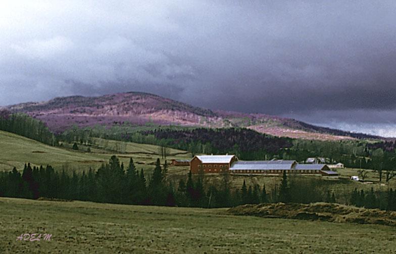 """фото """"Nature 10"""" метки: путешествия, Северная Америка"""