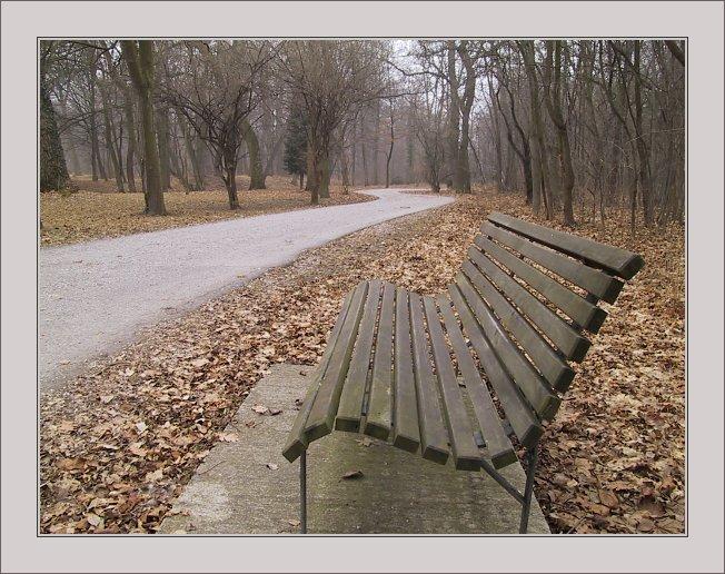 "photo ""Curves"" tags: landscape, winter"
