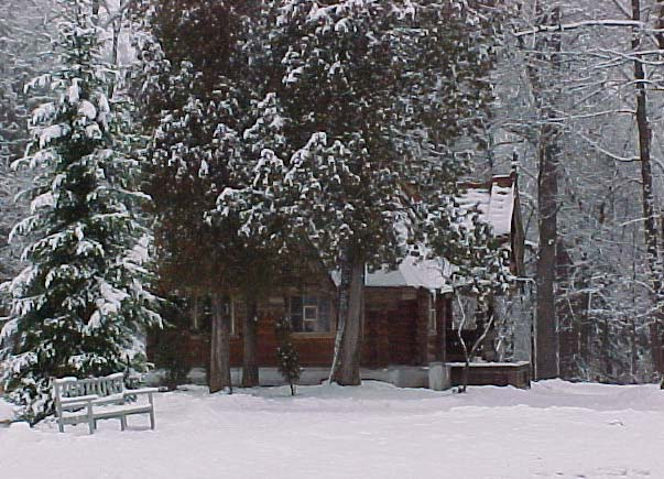 "photo ""The house in a wood"" tags: landscape, forest, winter"