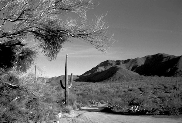 "photo ""Desert Mountain Road"" tags: travel, landscape, North America, mountains"