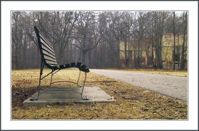 """фото """"How to Shoot Benches Silly"""" метки: натюрморт, пейзаж, зима"""