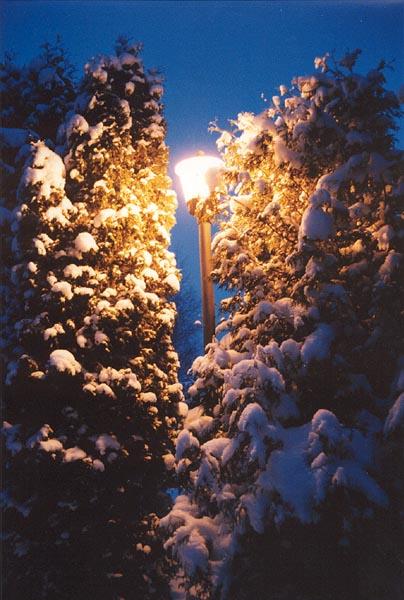 """фото """"Просто фонарь"""" метки: пейзаж, ночь"""