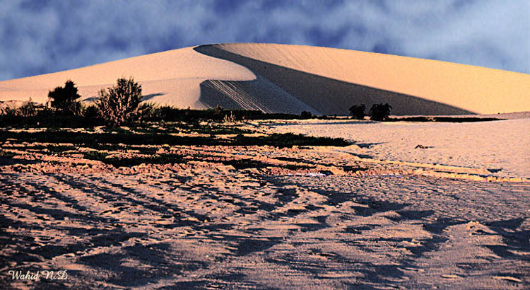 "photo ""Sand Dune#8"" tags: landscape, travel, Africa"