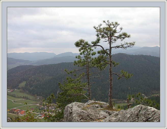 "photo ""Stones and Trees"" tags: landscape, mountains"