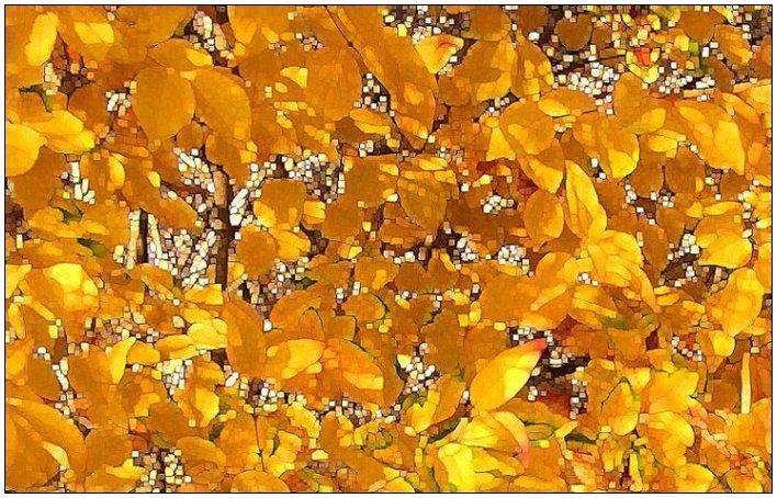 """фото """"*****"""" метки: пейзаж, природа, осень, цветы"""