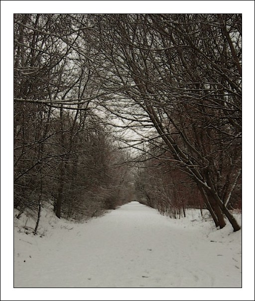"photo ""Road to nowhere"" tags: landscape, winter"