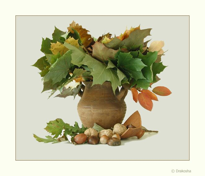 "photo ""Autumn still-life in light tones"" tags: still life, misc.,"