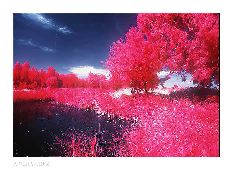"photo ""Red Vision I"" tags: landscape, spring"