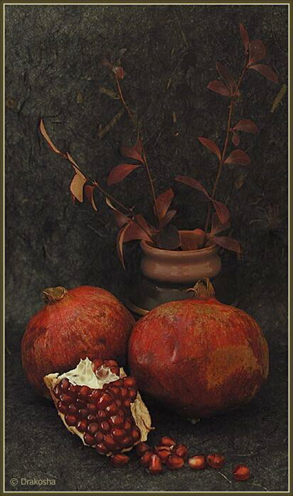 "photo ""Pomegranates with a vase"" tags: still life, misc.,"