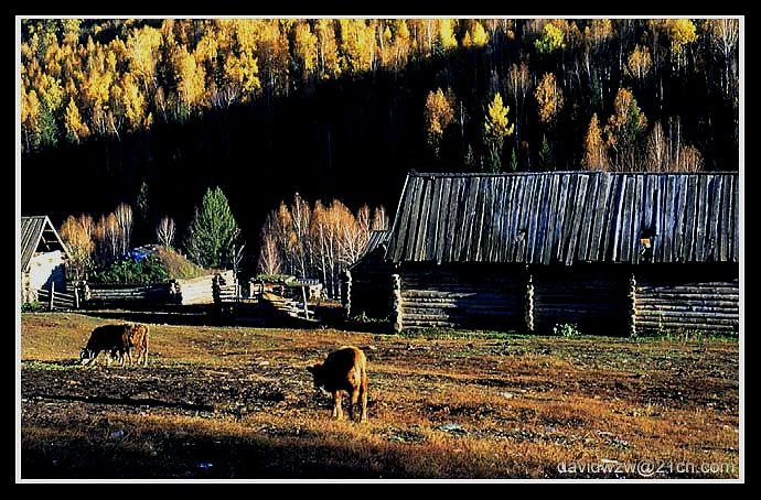 """фото """"Farm"""" метки: пейзаж, осень"""