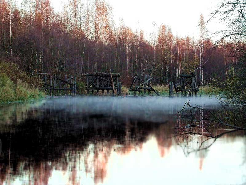 """фото """"Забвение"""" метки: пейзаж, природа, осень"""