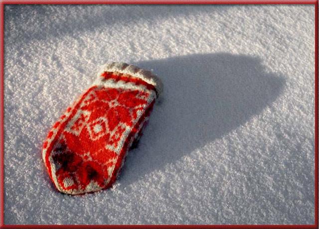 """фото """"Red in Snow"""" метки: натюрморт,"""