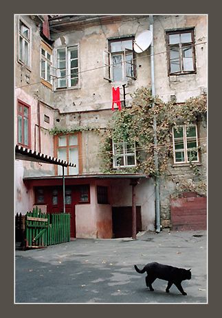 "photo ""Old Odessa. A court yard on Deribasovskajaa"" tags: architecture, misc., landscape,"