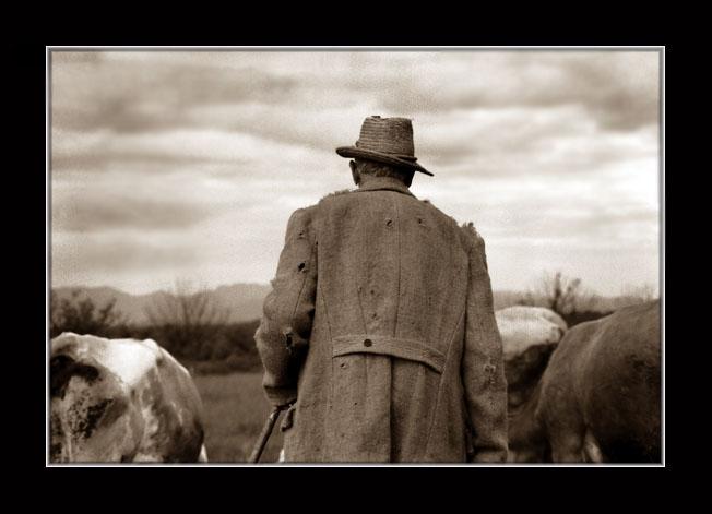 """photo """"Cowboy 2"""" tags: portrait, genre, man"""