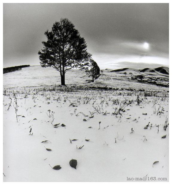 """фото """"weald"""" метки: пейзаж, зима"""