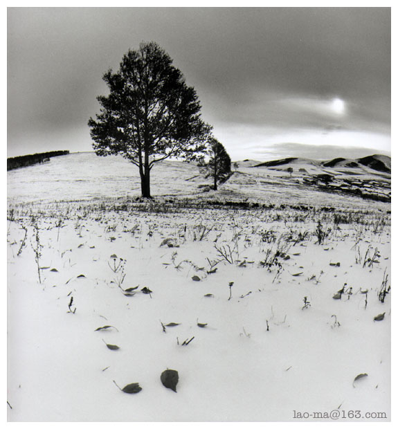 "photo ""weald"" tags: landscape, winter"