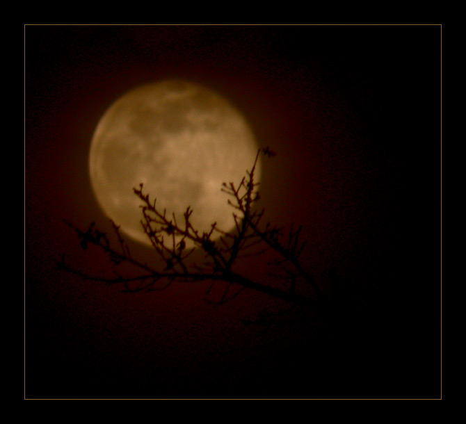 "photo ""Amberpearl Moon"" tags: landscape, night"