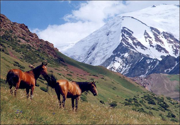 """photo """"Distant places..."""" tags: landscape, nature, mountains, pets/farm animals"""