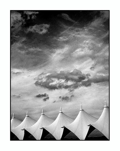"""фото """"black & white"""" метки: абстракция,"""