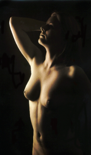 """photo """"Light and shade 2"""" tags: nude, portrait, woman"""