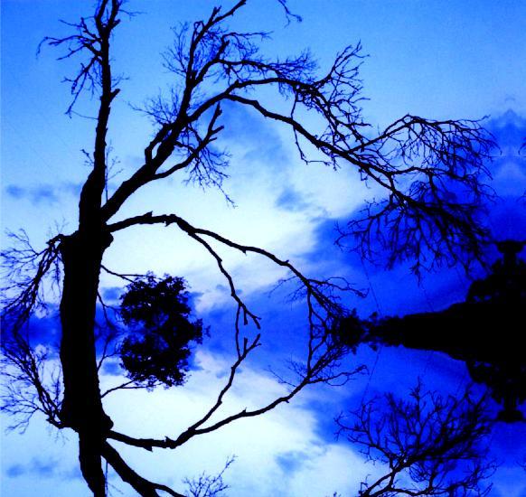 "фото ""Aqua Waterline"" метки: фотомонтаж,"