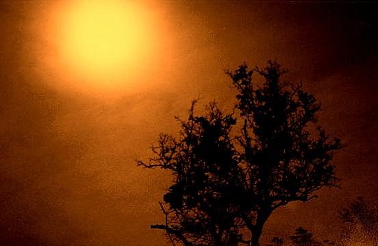 """фото """"Sunburst"""" метки: абстракция,"""