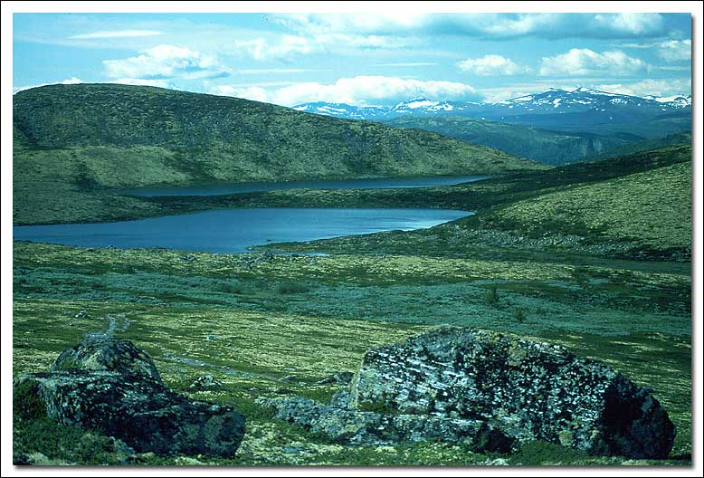 "фото ""Green landscape"" метки: пейзаж, горы, лето"
