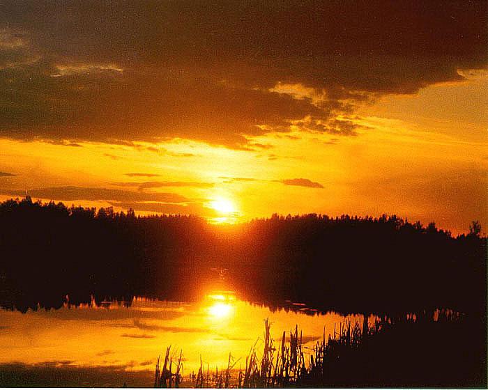 "фото ""Закат у пруда"" метки: пейзаж, закат"